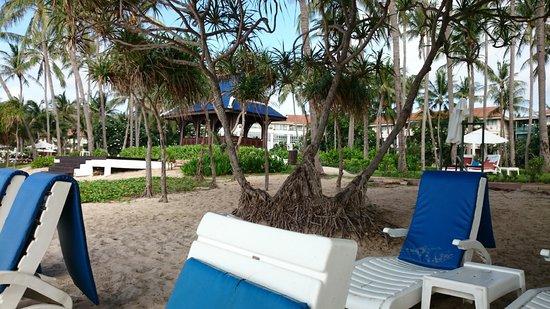 Centara Grand Beach Resort Samui : Beach pic