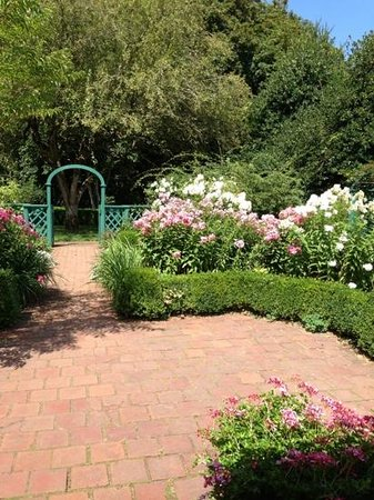 Deepwood Museum & Gardens : So many beautiful flowers to admire