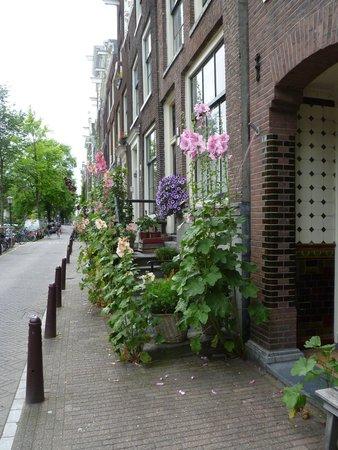 Hotel van Onna : van Onna is situated on 'Flower Street'