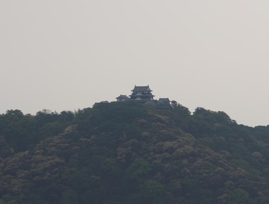 Hotel Kowakuen : 松山城