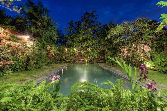 Kampung Kecil: The swimming pool after dark