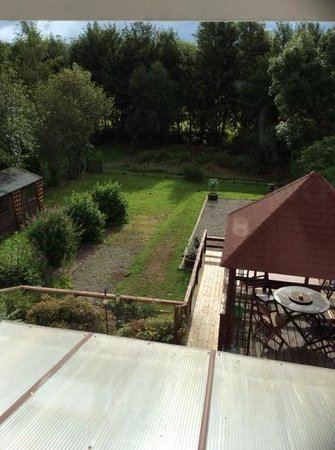 Ardlogie Guest House : the back garden, a wildlife oasis!