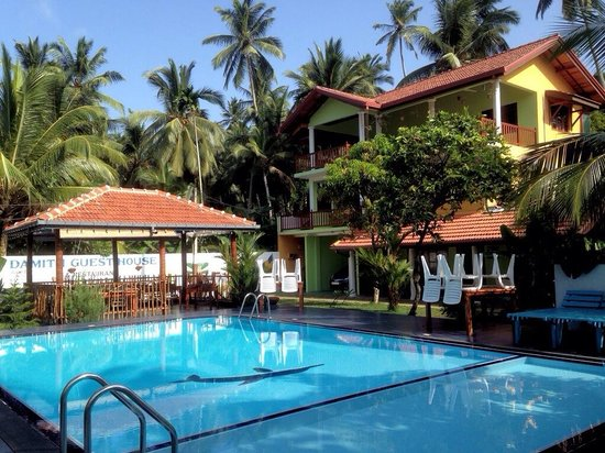 Damith Guest House : Fantastic swimming pool !