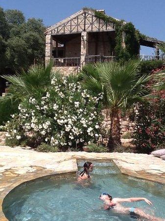 Hoyran Wedre Country Houses: hoyran piscine