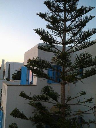 Photo of Kritikos Guesthouses & Studios Naxos