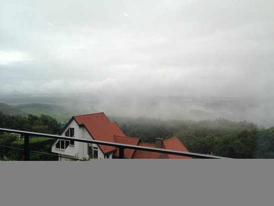 Le Grand Chalet & Spa : Room view