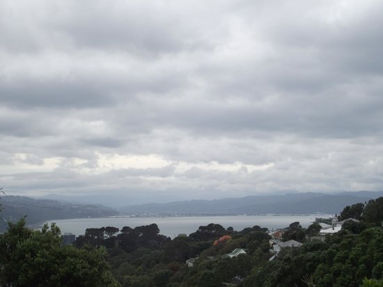 Wellington City Walkways: View from a trail