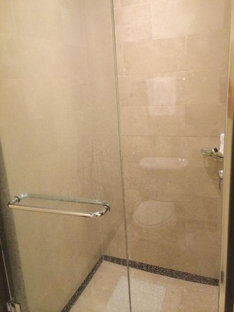InterContinental Buckhead Atlanta: Shower