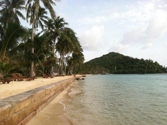 Phi Phi Island Village Beach Resort : private beach