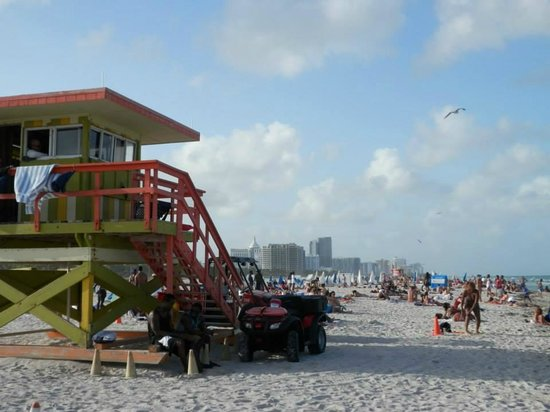 South Beach : la spiaggia