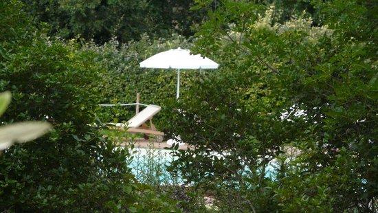 Fattoria dei Comignoli: Vista dal patio