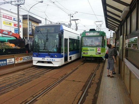 Hakodate Tram : 新旧車両