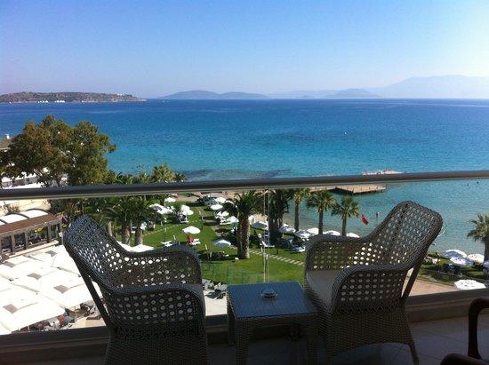 Boyalik Beach Hotel & Spa Cesme: Odadan plaj ve havuz alanı