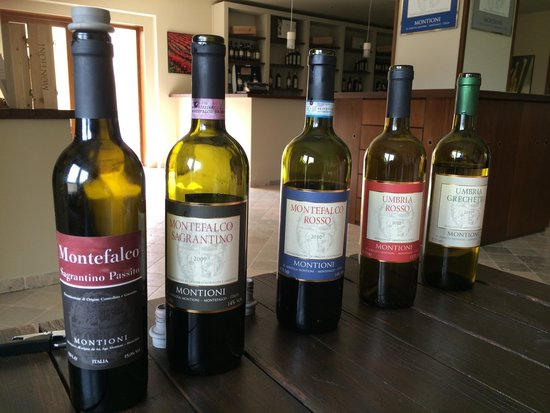 Montioni, Oil Mill & Winery: The wines!
