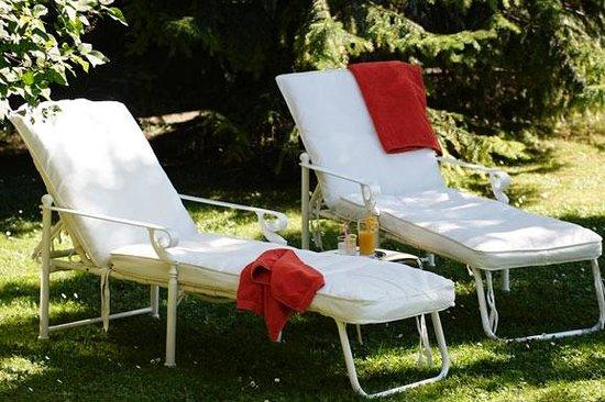 Hotel Wildstrubel : Welnessoase Garten