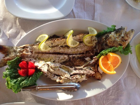Ibiskos Cafe and Restaurant: Fresh special fisch from this Gulf