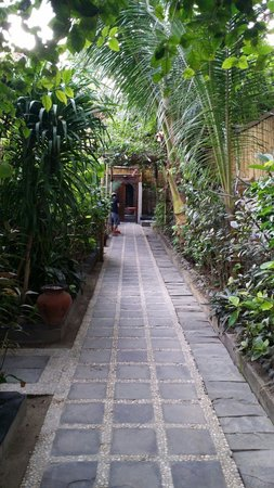 The Beach House Resort: The walkway from the reception & front of resort
