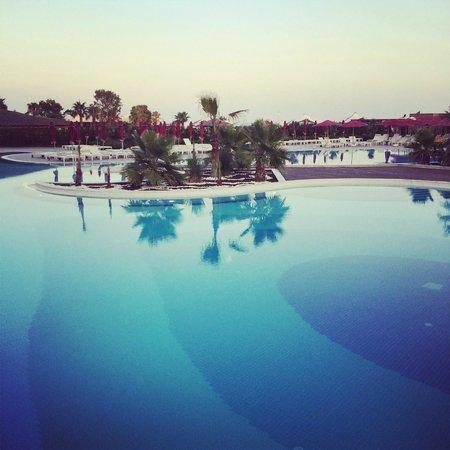 Kaya Palazzo Golf Resort: Pool area