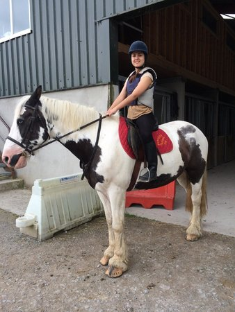 Drumcliffe Equestrian: .