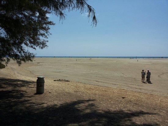 Playa de Sotavento : Prima..