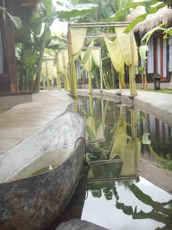 The Mansion Resort Hotel & Spa: Gardens