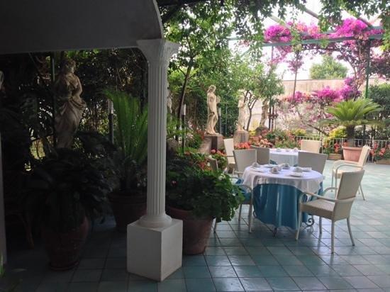 Hotel Gatto Bianco: breakfast area