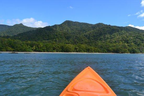 Paddletrek Kayak Adventures: View from the kayak