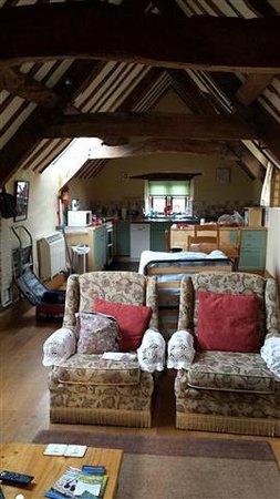 Norton House Bed & Breakfast: Main room looking toward kitchen area