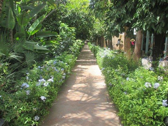 Les Jardins de la Medina: jardin vers bibliothèque des voyageurs