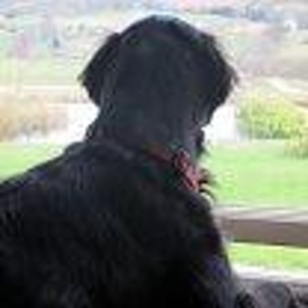 Ox Pasture Hall Hotel: Olly enjoying the wonderful view