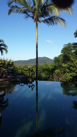 Cockatoo Hill Retreat: view from the swimming pool