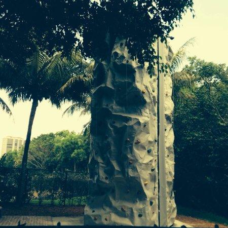 Hyatt Regency Coconut Point Resort and Spa: Rock climbing station for everyone!