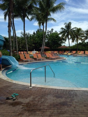 Hyatt Regency Coconut Point Resort & Spa: Adults only area! Sweet!