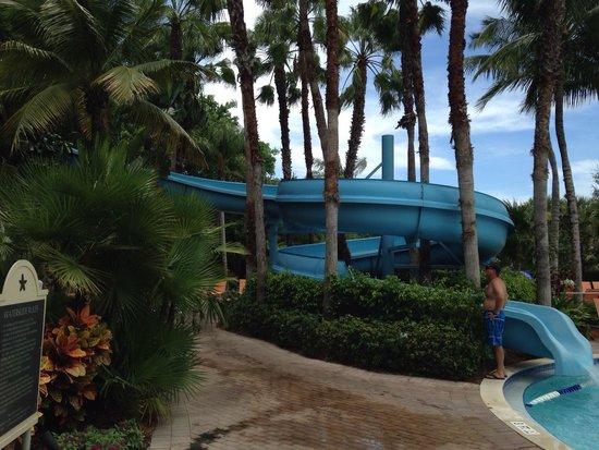 Hyatt Regency Coconut Point Resort & Spa: Water slide for the kiddies! What fun.