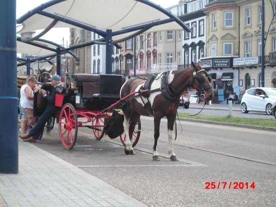 Great Yarmouth Marine Parade: Horse & carriage