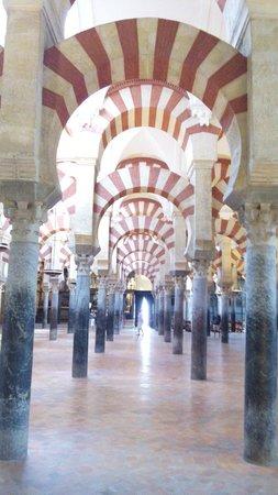 Cathédrale de Cordoue : El infinito