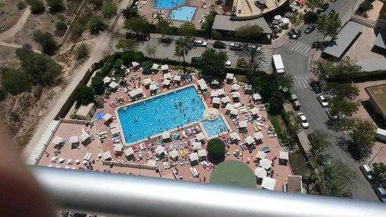 Marconfort Benidorm Suites: Vista desde la planta 23