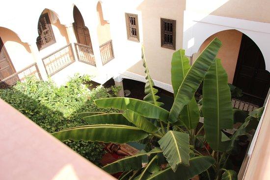 Riad l'Oiseau du Paradis: Riad