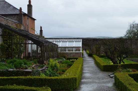 Llanerchaeron: Greenhouse