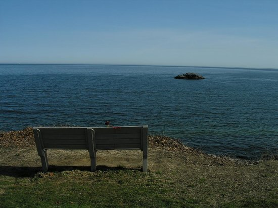 East Lyme, CT: Just near the beach is a small park... and a bench... for quiet peaceful time away from the chao
