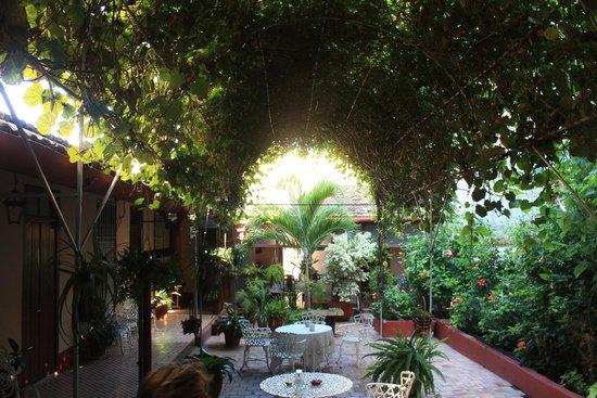 Hostal Yahima y Ariel: Jardín