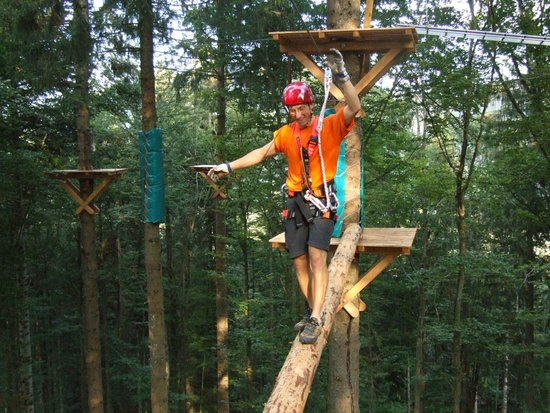 Action Forest Active Hotel: Action Forest Kletterwald