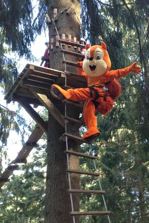 Action Forest Active Hotel: Foxy im Action Forest Kletterwald