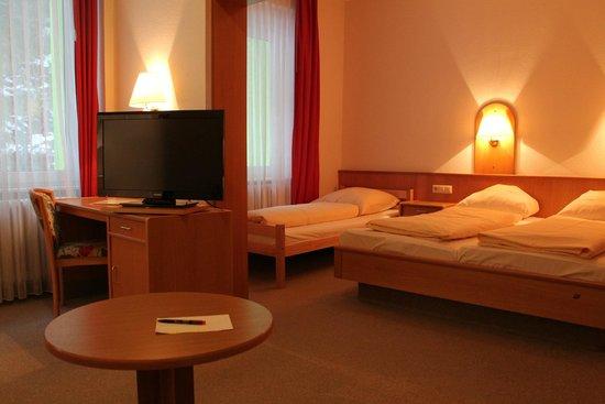 Action Forest Active Hotel: 3er-Zimmer
