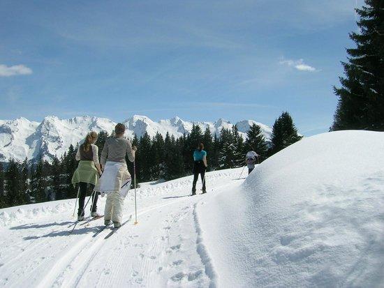 L'Auberge Nordique: ski de fond découverte