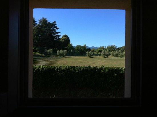 Farmhouse All'Ombra del Tiglio : Vista dalla camera