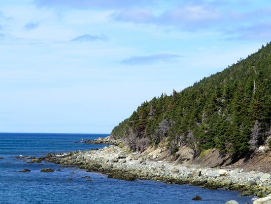 THE 5 BEST Things to Do in Conception Bay South - UPDATED