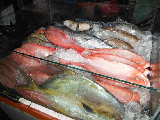 Lia Cafe: 新鮮な魚