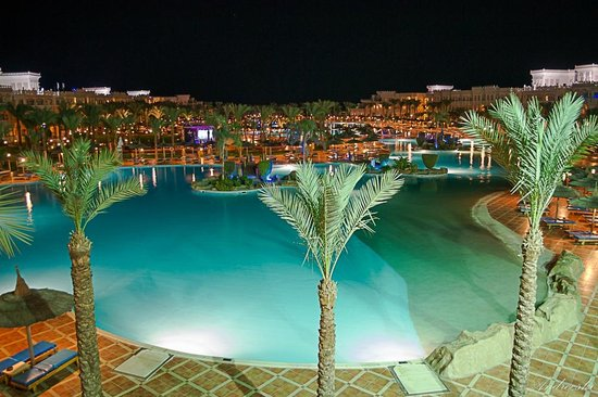 Albatros Palace Resort : pool
