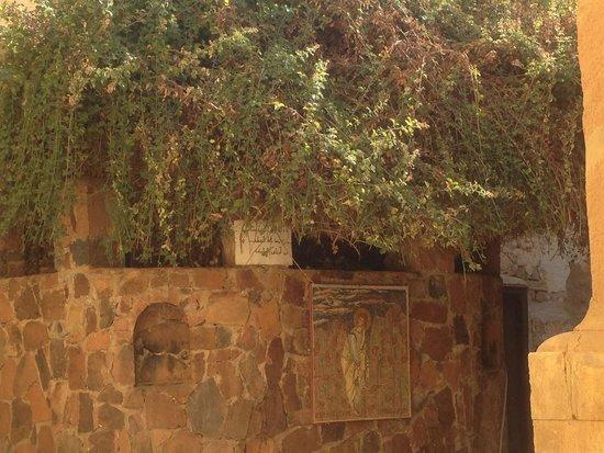 Mount Sinai: The burning Bush